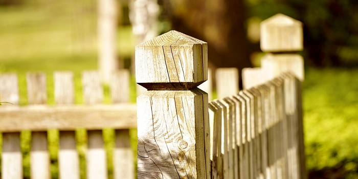 What Color to Stain Pressure Treated Wood Fence